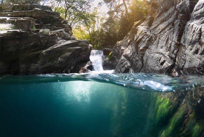 На границе воды и воздуха