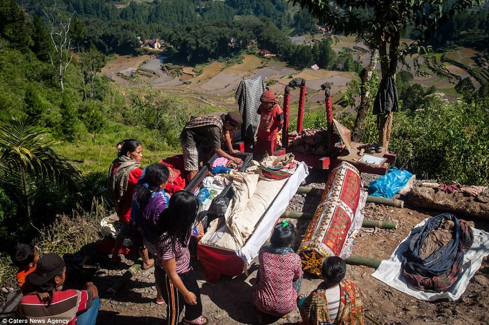 Праздник урожая: индонезийцы выкапывают и переодевают умерших родственников