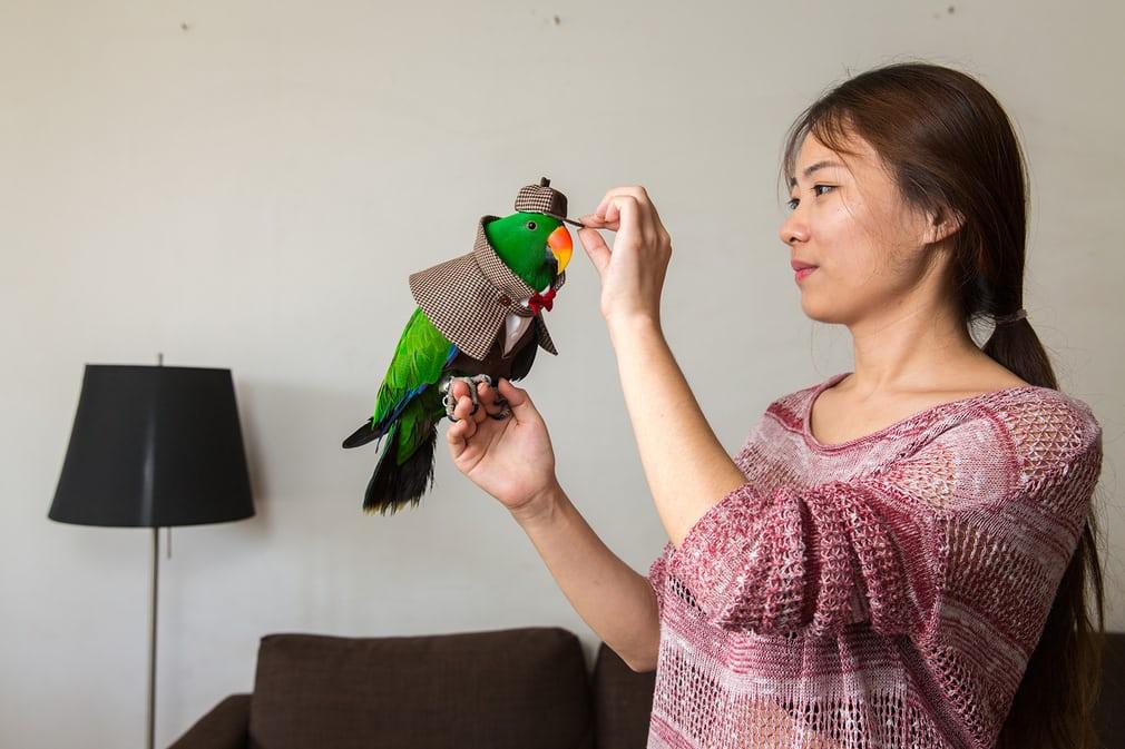 Экзотические животные и их владельцы из Пекина