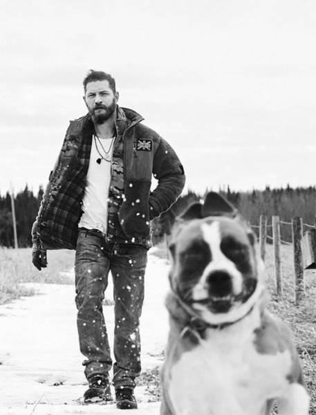 Том Харди очень любит собак