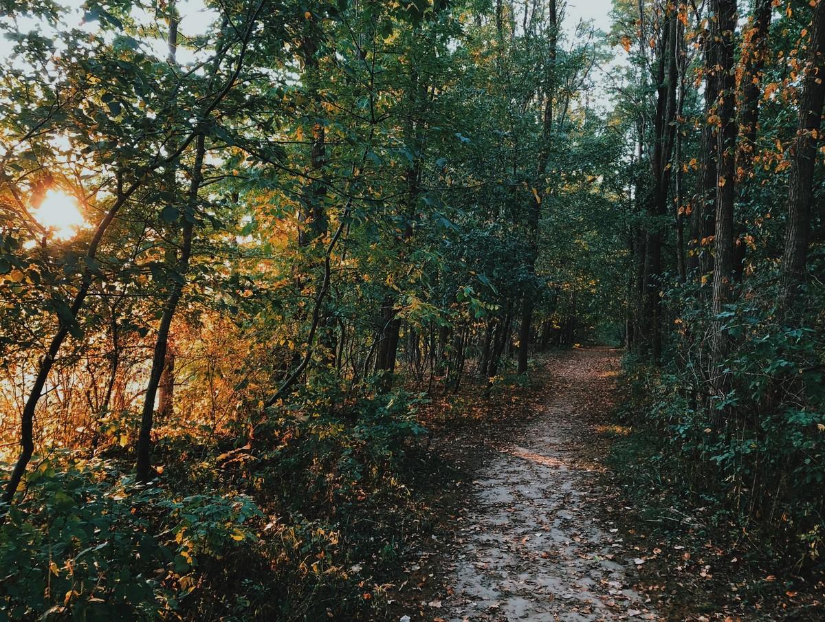 Красоты осени на снимках Аарона Бурдена