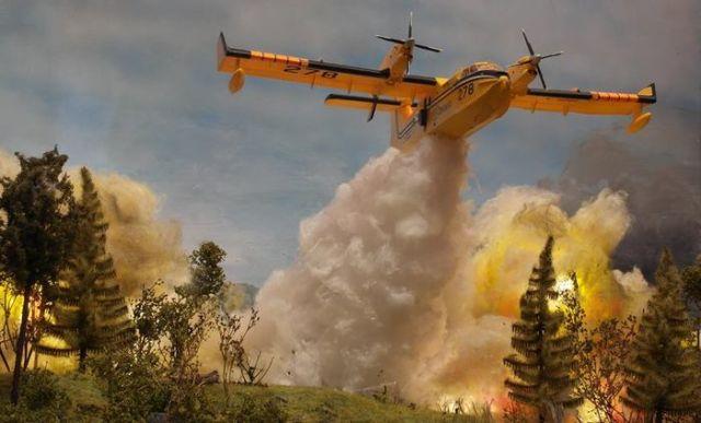 Необычное фото тушения лесного пожара