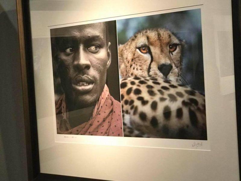 Фотовыставку в Китае закрыли из-за сравнения африканцев с обезьянами