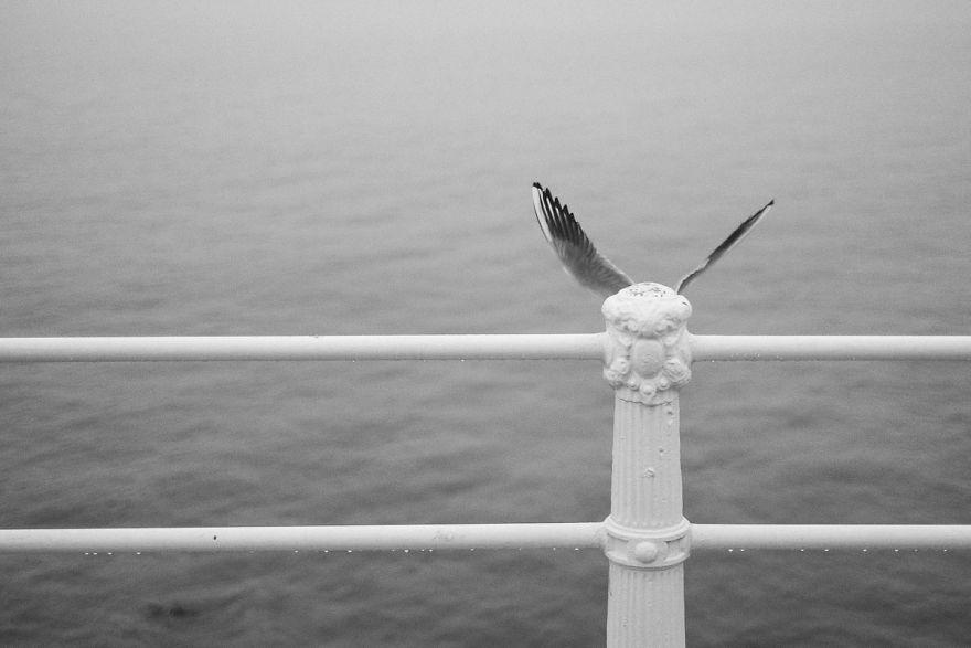 Удивительные совпадения в фотопроекте Дениса Черима
