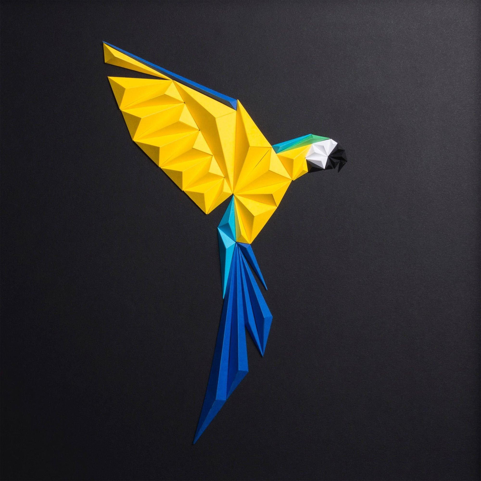 Красочные геометрические птицы из бумаги от Тайфуна Тинмаза