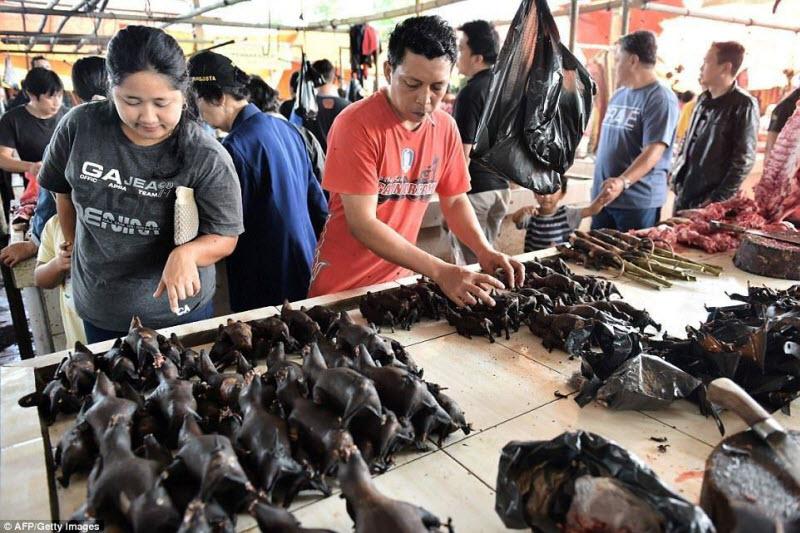 Экзотические животные на индонезийских продовольственных рынках