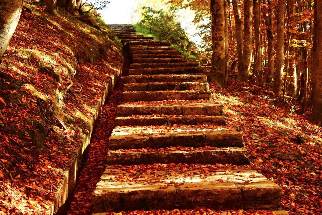 20 фотографий, на которых осень фантастически прекрасна
