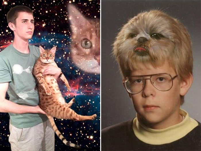 Странные и смешные снимки с домашними животными