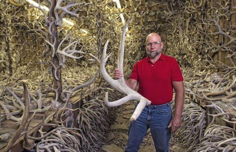 Американец собрал коллекцию из 15 000 рогов