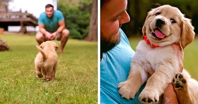Самая искренняя дружба с животными