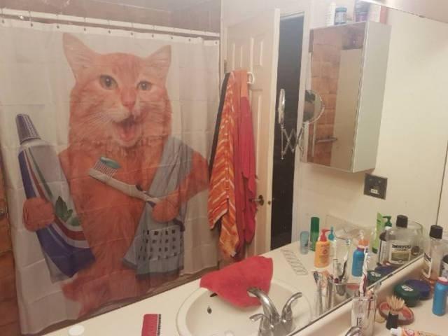 Прикольные занавески для ванной