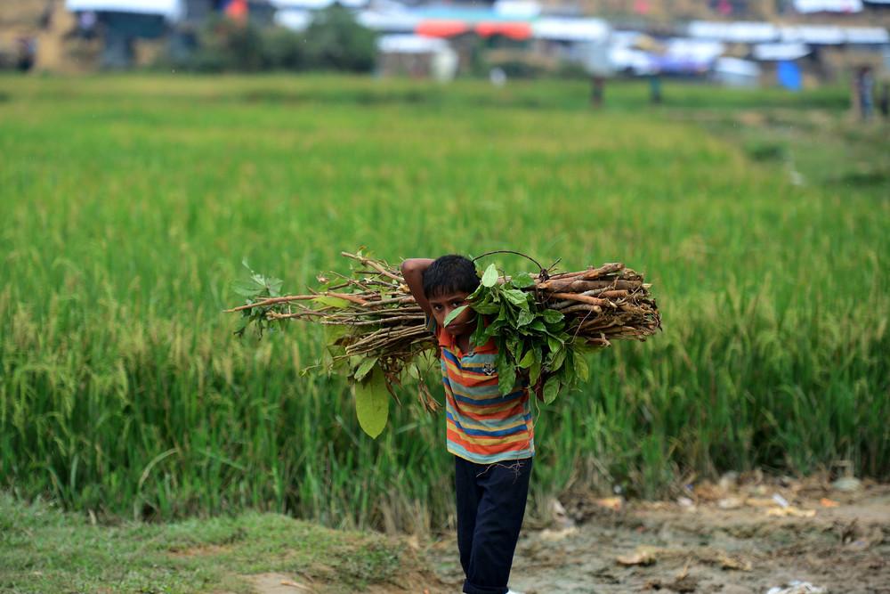 Дети на работе с ранних лет