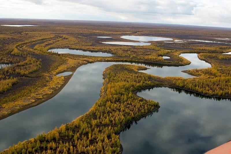 10 самых больших рек России
