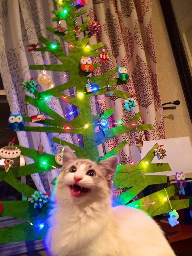 20 забавных фото с духом новогодних праздников