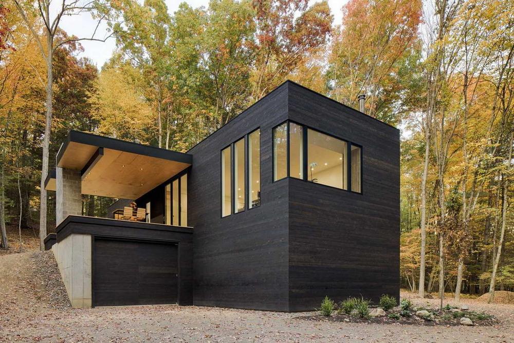 Черный дом в американском лесу