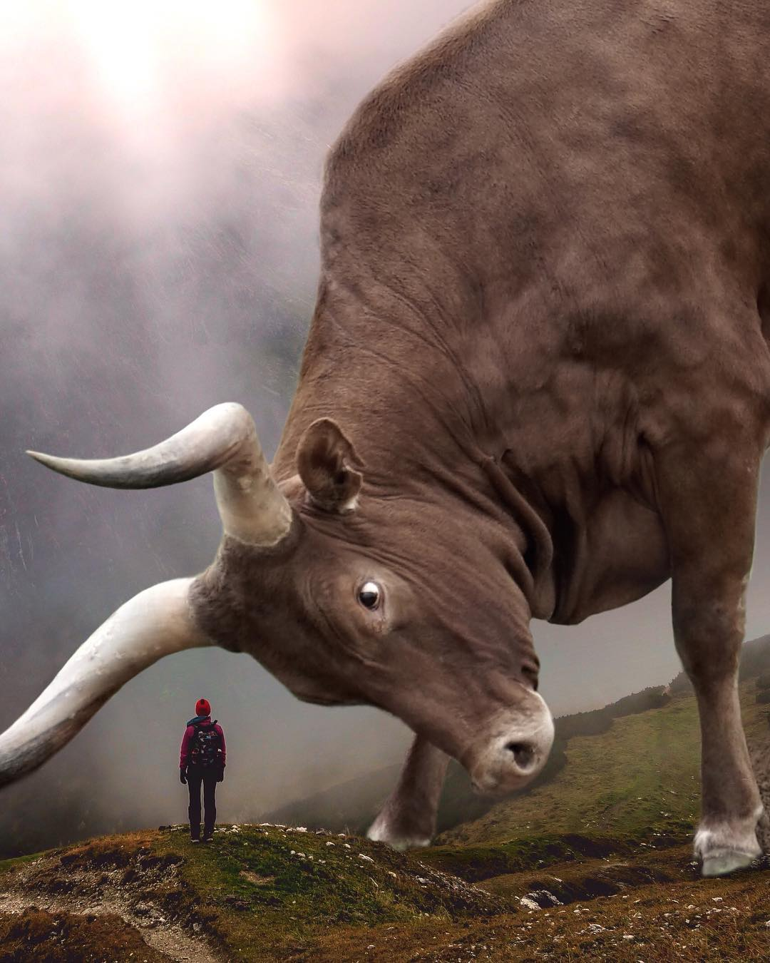Большие животные и маленькие люди от Эбена Маккриммона