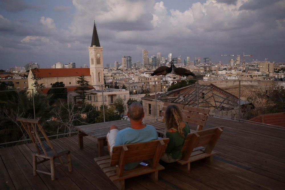 Светская жизнь на крышах Тель-Авива