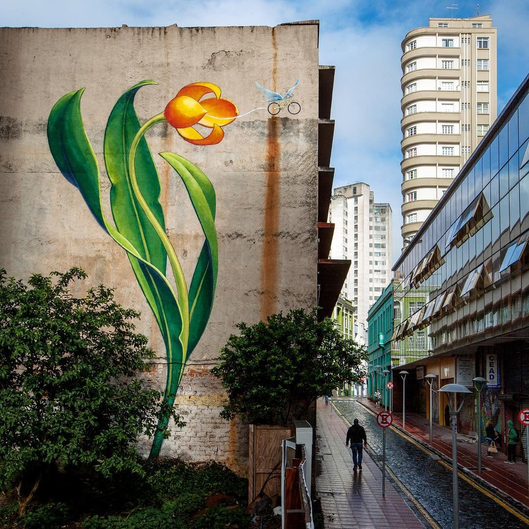 Цветочные рисунки на стенах городов от Моны Карон