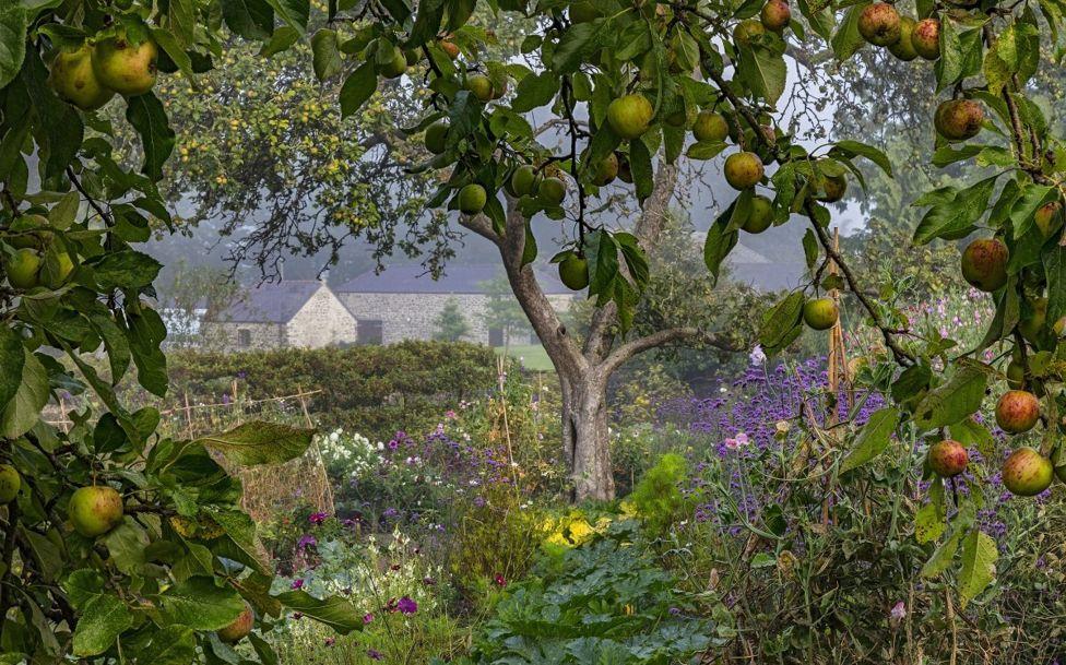 Победители конкурса садово-парковой фотографии 2018