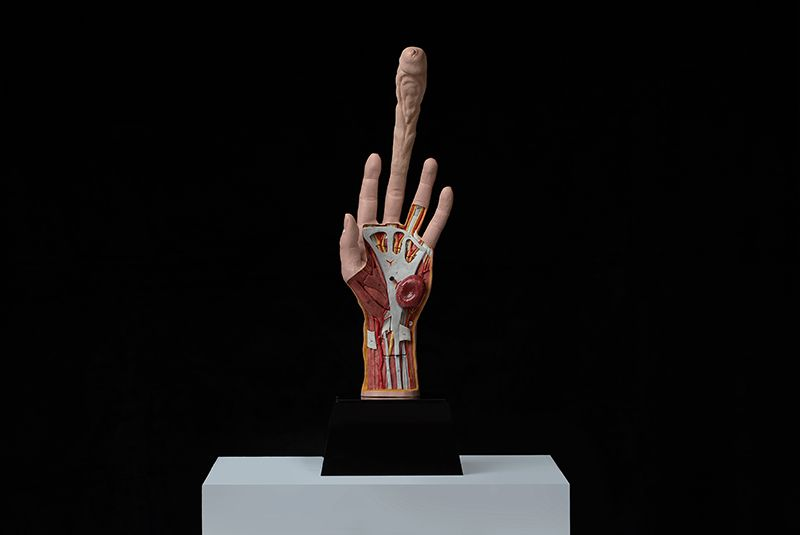 Палец для самооплодотворения женщин будущего