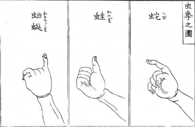 Откуда взялись 7 самых распространенных жестов