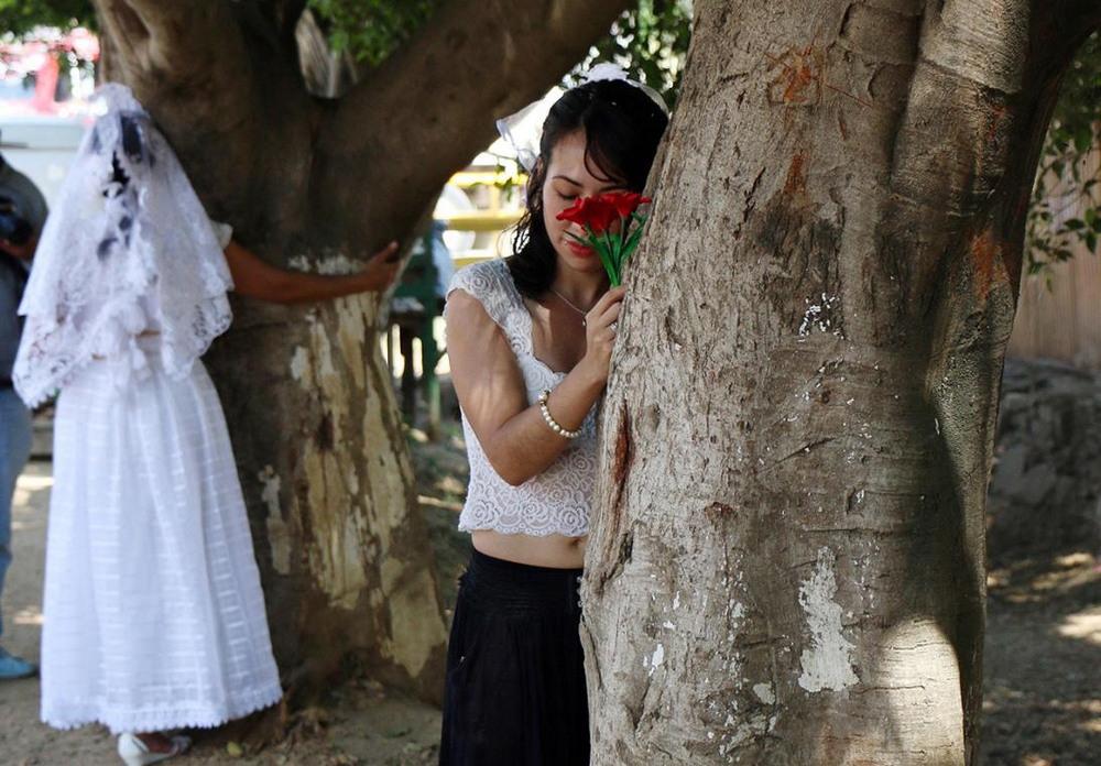 Мексиканки вышли замуж за деревья