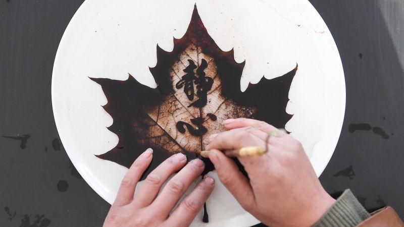 Потрясающие рисунки на опавших листьях от китайского мастера
