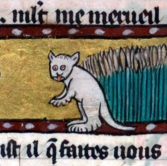 Коты на картинах художников средневековья