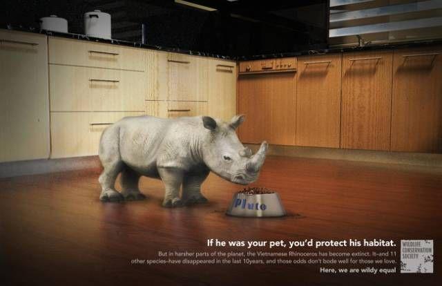Отличные примеры социальной рекламы