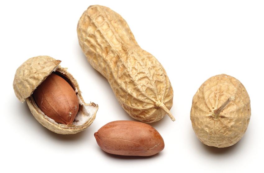 Самые полезные орехи для организма