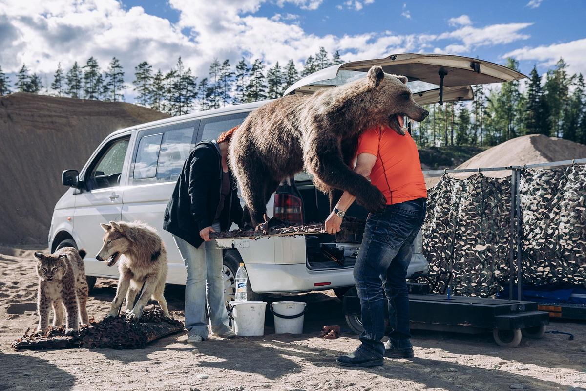 Особые отношения финнов с животными