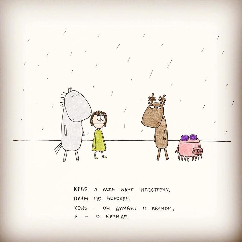 Мы с конем по полю идем
