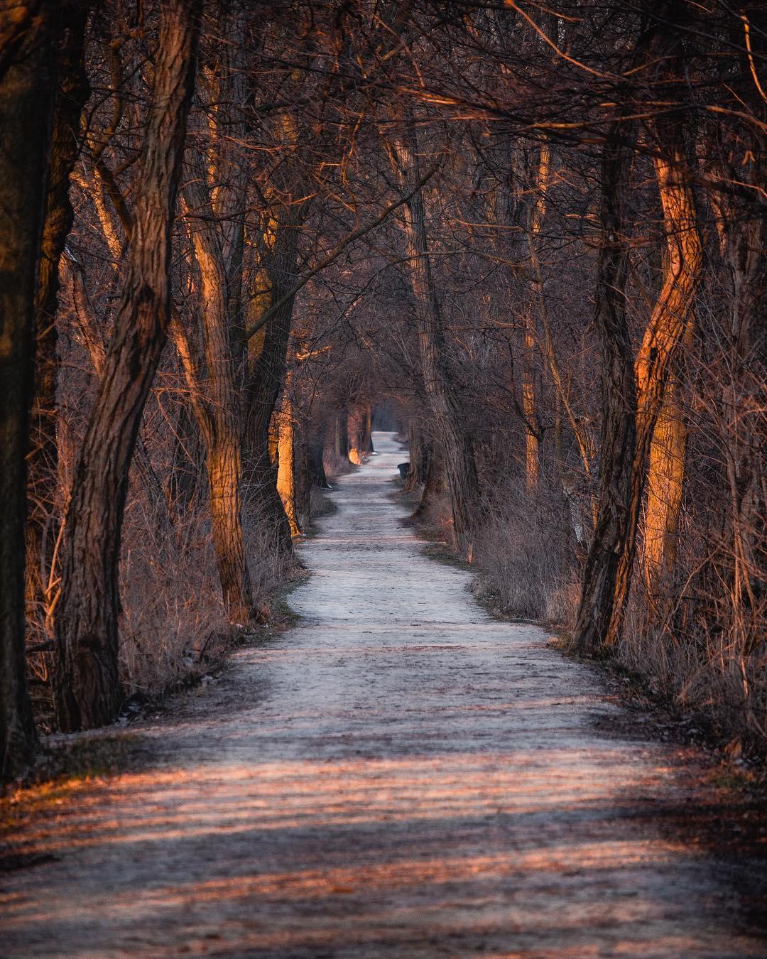 Красота природы и путешествия на снимках Логана Брауна