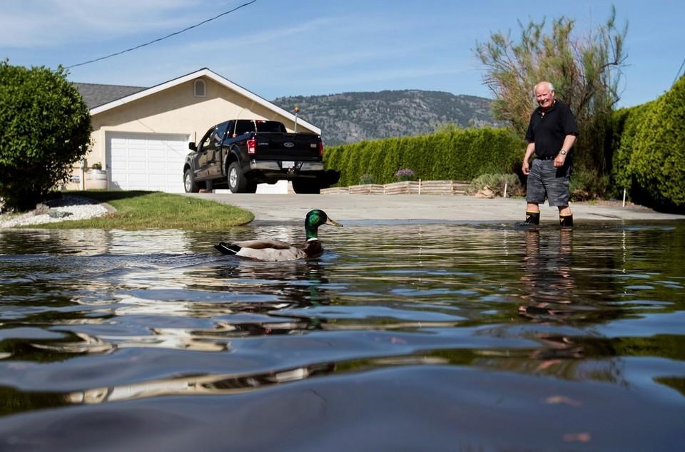 Тысячи людей покинули дома в Британской Колумбии из-за сильного наводнения