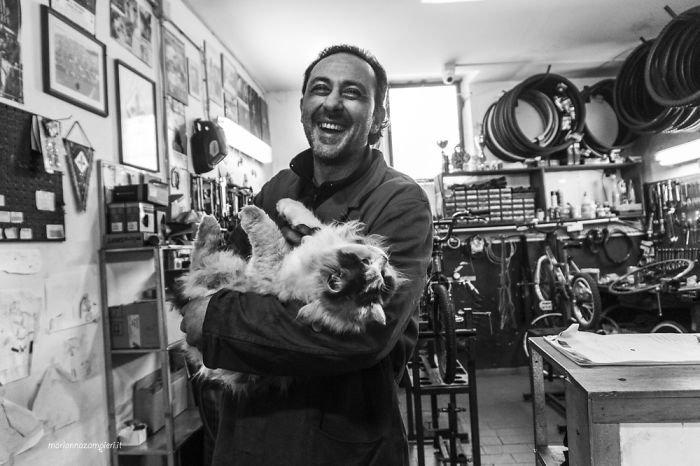 Кошачье удовольствие в фотопроекте Марианны Дзампиери
