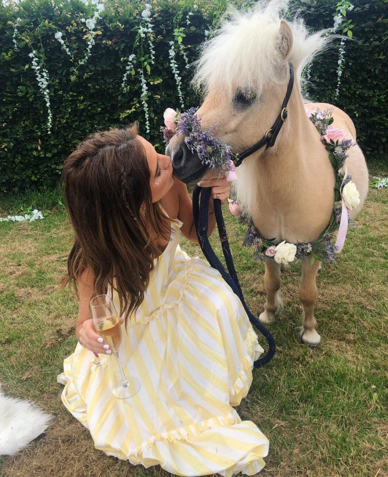 Двухлетний пони стал звездой Instagram