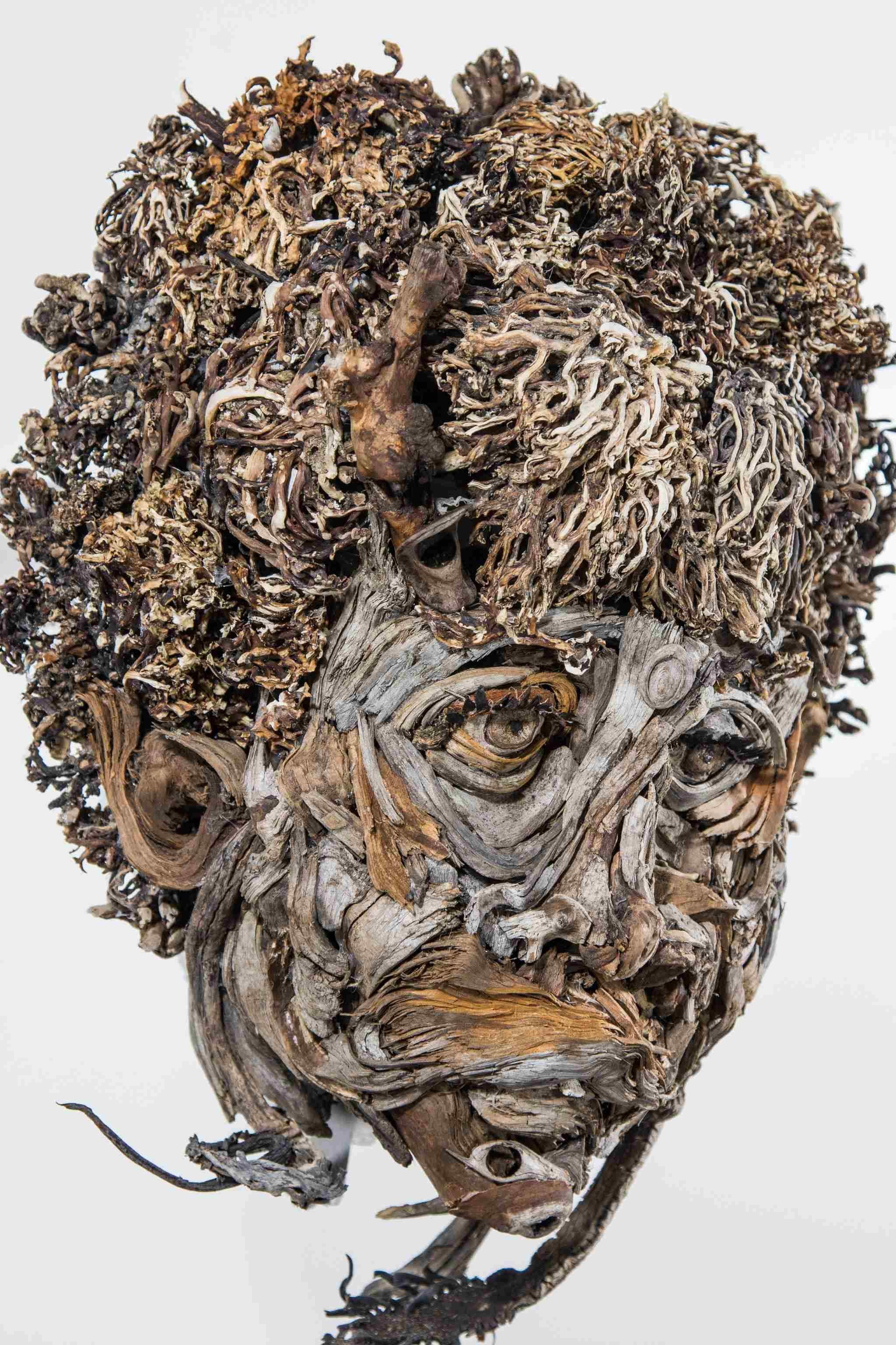 Портреты из коряг от Айвэна Тамблвида