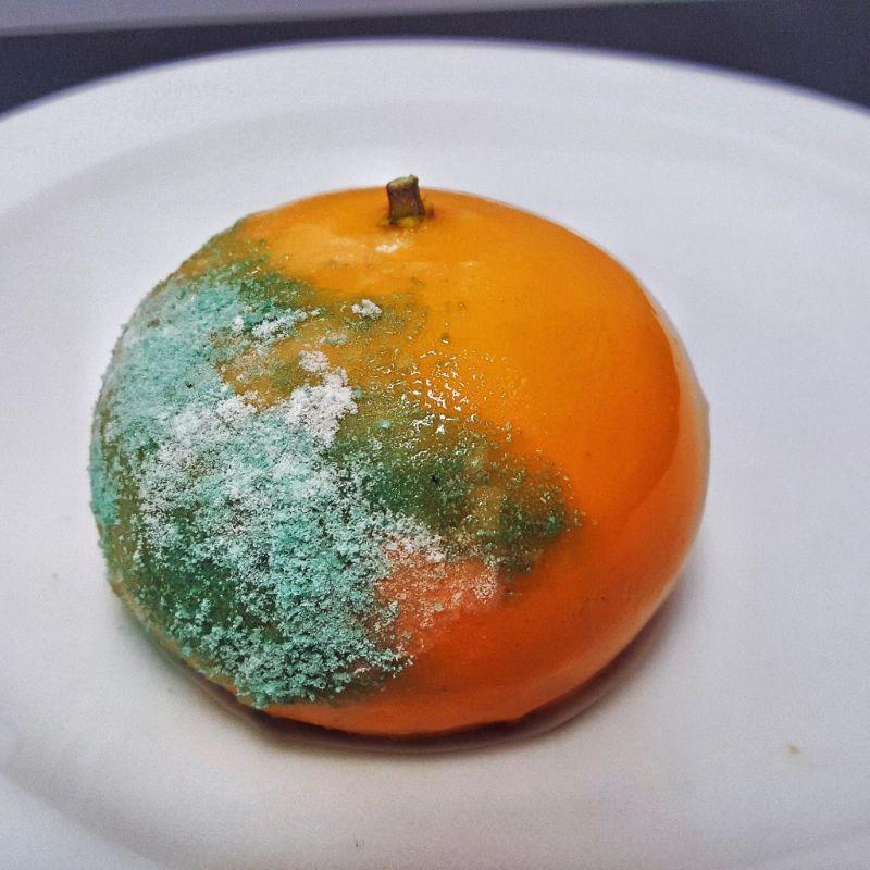 Десерты в виде заплесневелых фруктов и пепельницы с окурками