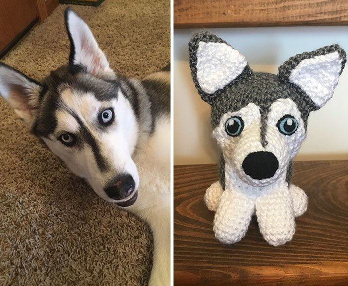 Домохозяйка копирует домашних животных с помощью вязального крючка