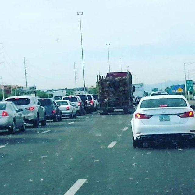 Забавные ситуации на дорогах, снятые из окна автомобиля