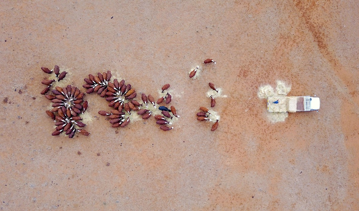 Засуха в Австралии на снимках с высоты
