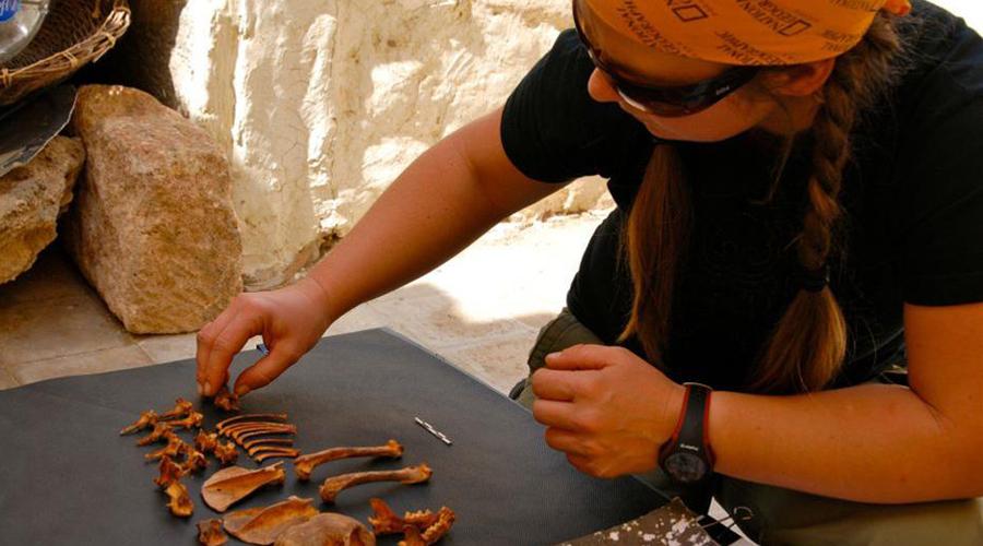Что мусор древних открыл ученым о Древнем Риме