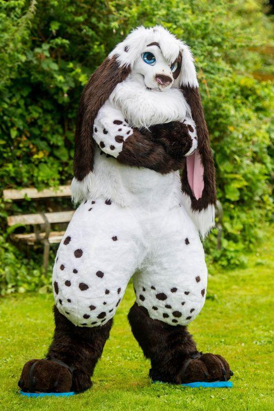 Механик наряжается в костюм кролика и бегает в нем по городу