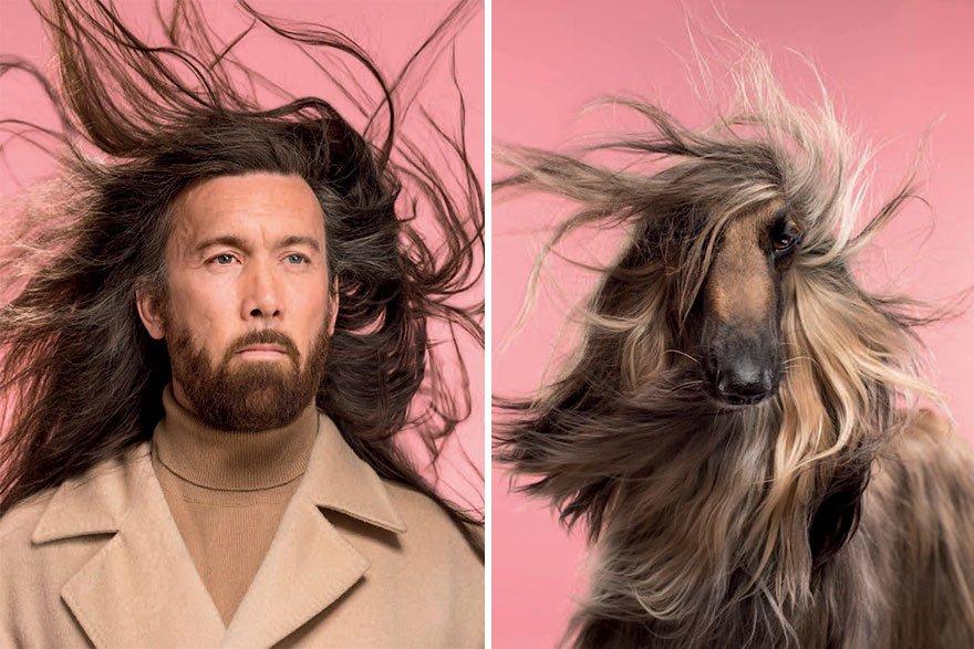 Удивительное сходство собак и их владельцев