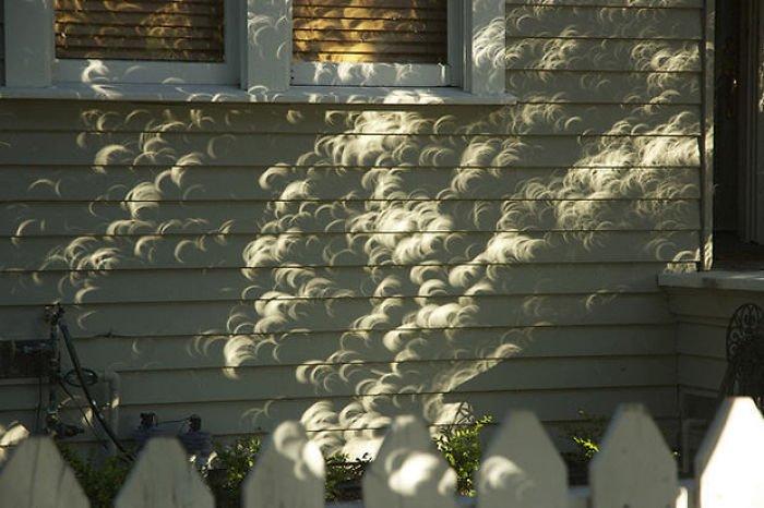 Необычные иллюзии, созданные тенью