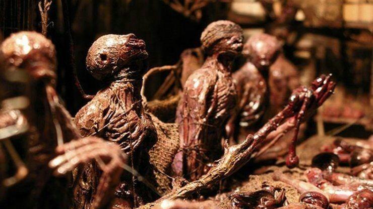 Жуткие диорамы в эстетике каннибализма и паразитизма от Марка Пауэлла