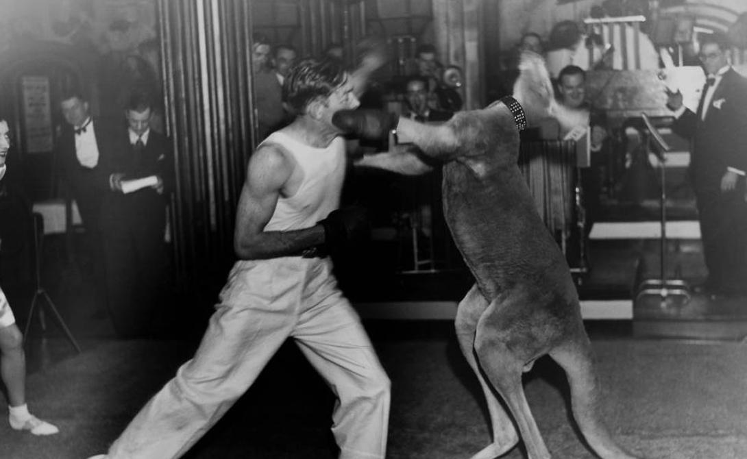 Необычный спорт из прошлого