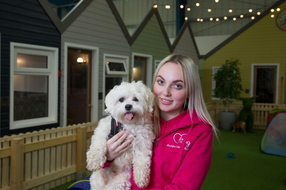 Роскошный пятизвездочный отель для собак в Великобритании