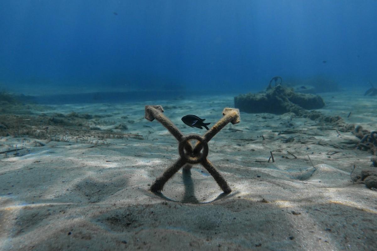 Грязное морское дно в Греции