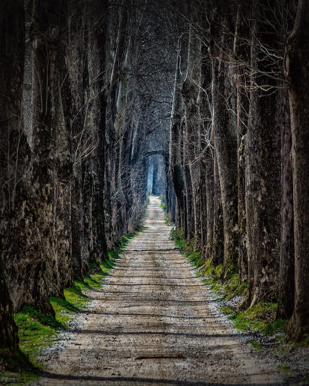 Путешествия и приключения на снимках Алтуга Галипа